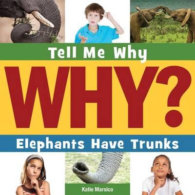 Elephants Have Trunks book
