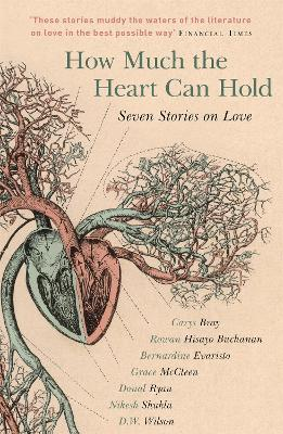 How Much the Heart Can Hold by Carys Bray