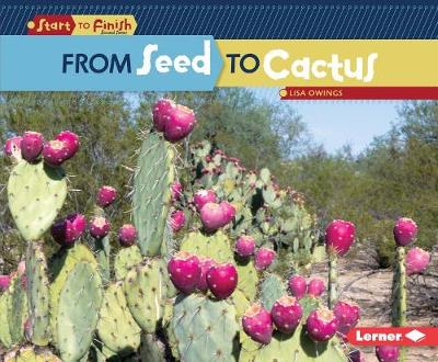 From Seed to Cactus by Lisa Owings
