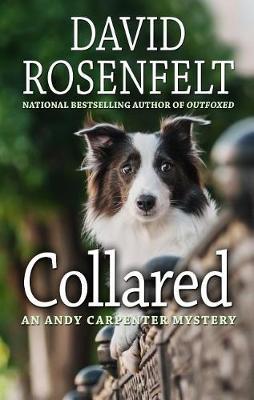 Collared by David Rosenfelt
