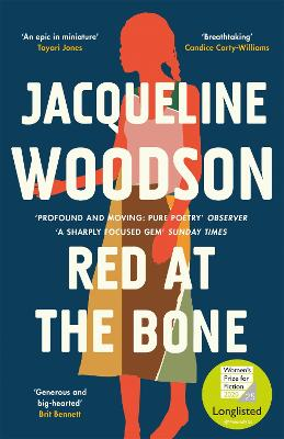 Red at the Bone: Longlisted for the Women's Prize for Fiction 2020 book