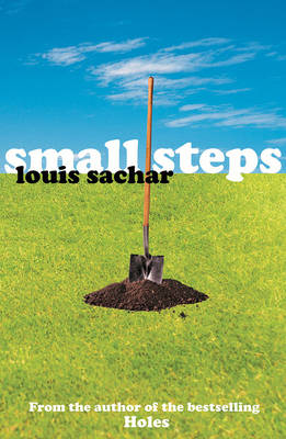 Small Steps book