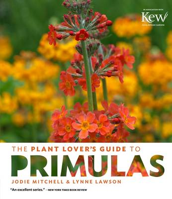 The Plant Lover's Guide to Primulas by Jodie Mitchell