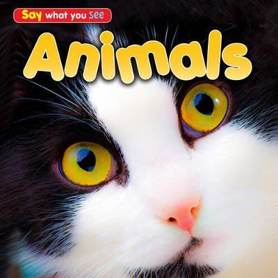 Animals by Rebecca Rissman