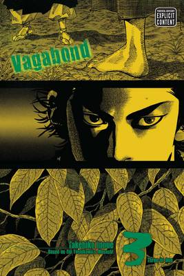 Vagabond, Vol. 3 (VIZBIG Edition) book