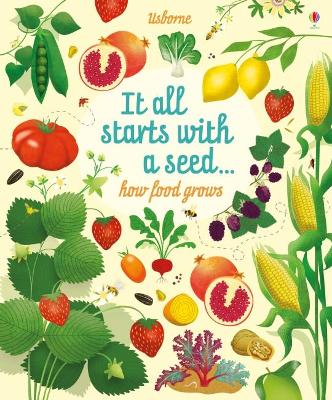 Big Picture Book How Food Grows book