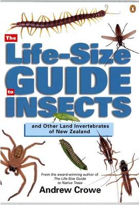 Life-Size Guide to Insects by Andrew Crowe