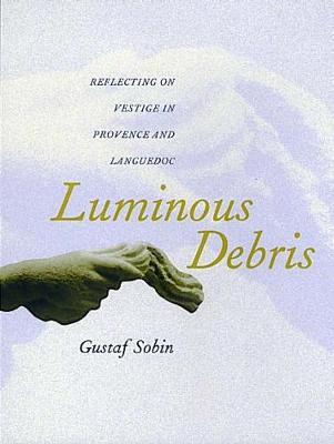 Luminous Debris book