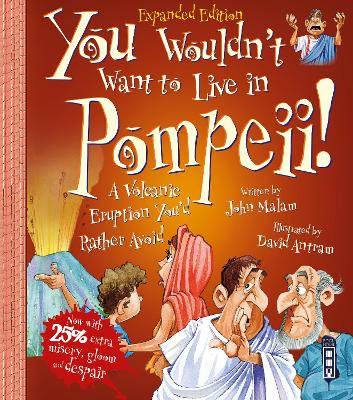You Wouldn't Want To Be A Slave In Pompeii! by John Malam