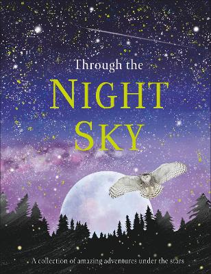 Through the Night Sky: A collection of amazing adventures under the stars by DK