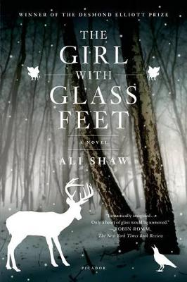 Girl with Glass Feet book
