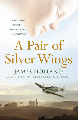 Pair of Silver Wings by James Holland