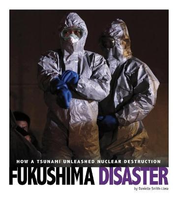 Fukushima Disaster by Danielle Smith-Llera
