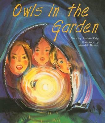 Owls in Garden by Professor Andrew Kelly