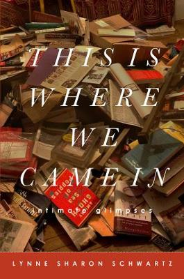 This Is Where We Came In by Sharon Schwartz