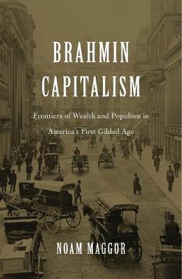 Brahmin Capitalism book
