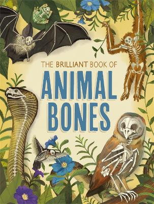 The Brilliant Book of Animal Bones by Anna Claybourne