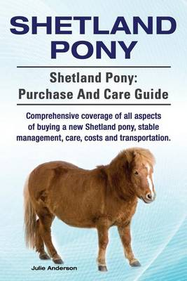 Shetland Pony. Shetland Pony by Rollins College Julie Anderson