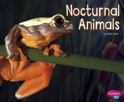 Nocturnal Animals book