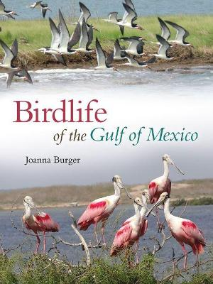 Birdlife of the Gulf of Mexico by Joanna Burger