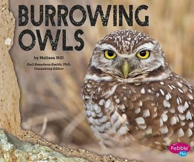 Burrowing Owls book