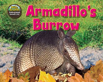 Armadillo's Burrow by Dee Phillips
