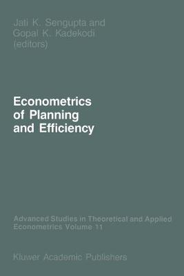 Econometrics of Planning and Efficiency by Jati Sengupta