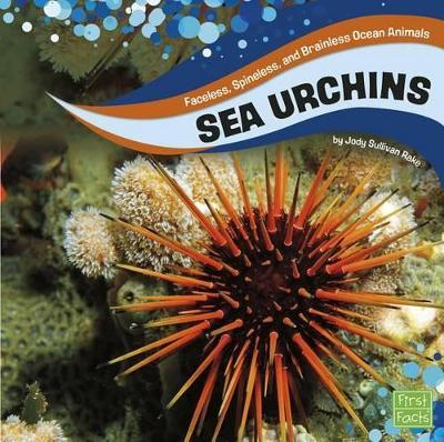 Sea Urchins by Jody S Rake