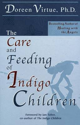 Care & Feeding Of Indigo Children by