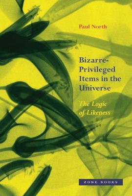 Bizarre-Privileged Items in the Universe - The Logic of Likeness by Paul North