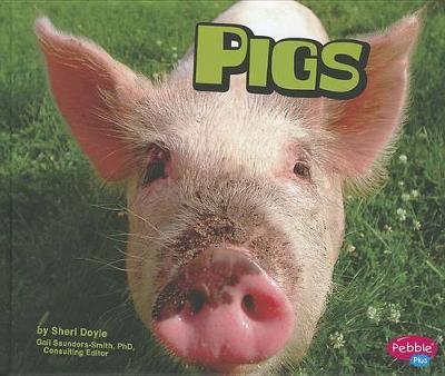 Pigs by Sheri Doyle