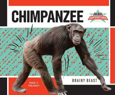 Chimpanzee by Paige V Polinsky