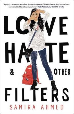 Love, Hate And Other Filters book