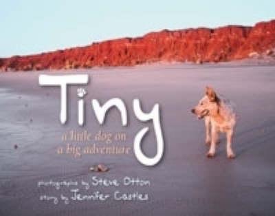 Tiny by Jennifer Castles