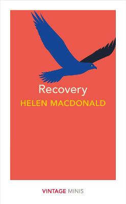 Recovery: Vintage Minis by Helen Macdonald