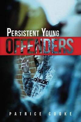 Persistent Young Offenders book