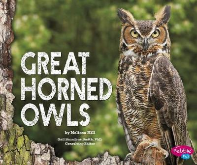 Great Horned Owls by Melissa Hill