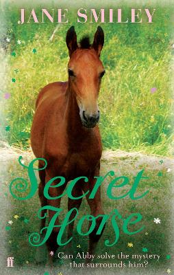Secret Horse book