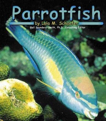 Parrotfish by Lola M. Schaefer