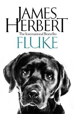 Fluke by James Herbert
