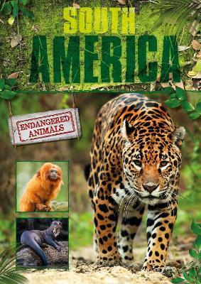 South America book