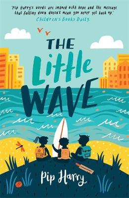 The Little Wave book