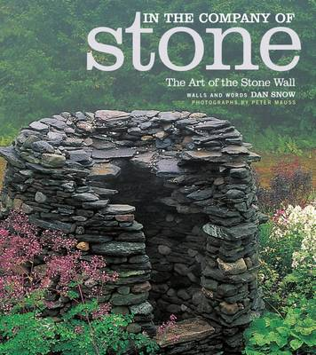 In the Company of Stone by Dan Snow