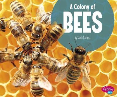 A Colony of Bees by Martha E H Rustad