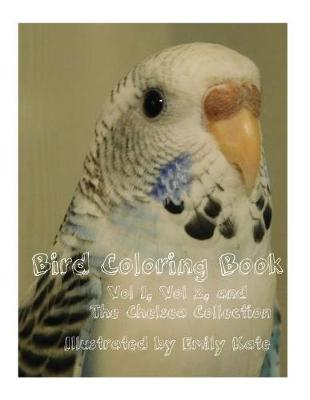 Bird Coloring Book by Emily Kate Martin