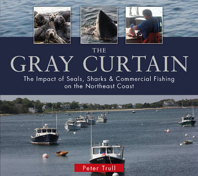 The Gray Curtain by Peter Trull