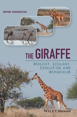 The Giraffe by Bryan Shorrocks