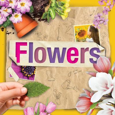 Flowers by Steffi Cavell-Clarke
