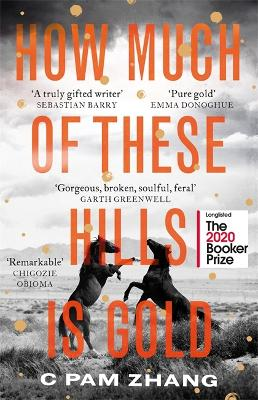 How Much of These Hills is Gold: Longlisted for the Booker Prize 2020 by C Pam Zhang