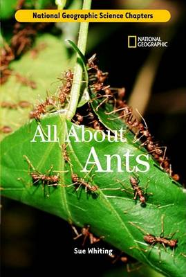 All about Ants by Sue Whiting
